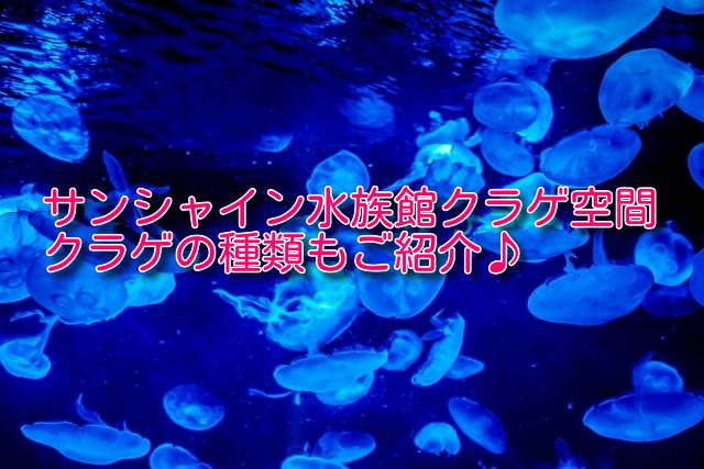 サンシャイン水族館海月空間